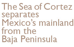 The Sea of Cortez separates Mexico's mainland from the Baja Peninsula.