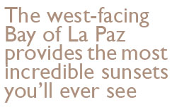 The west-facing Bay of La Paz provides the most incredible sunsets you'll ever see.